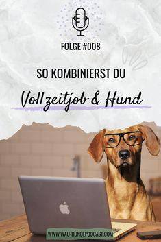 Positive Verstärkung, Adoption, Tricks, Animals, Office, Kind, Dog, Dog Care, Dog Training School