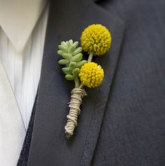 rustic boutonniere - yellow billy button and succulent