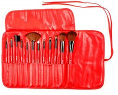 13PC Professional Brush Set from Shany cosmetics --this is my first brush set