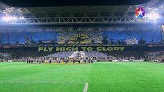 FENERBAHÇE fans (Fenerbahçe:1 - Benfica:0)
