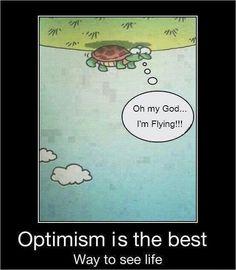 Optimismo    Tortuga: Oh, Dios mío...estoy volando!!!    Optimismo es la mejor manera de ver la vida