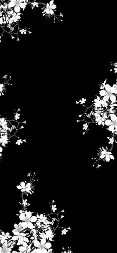 Remix of the 死 (death) remix (i.it) submitted by exolocity to. , Remix of the 死 (dying) remix (i.it) submitted by exolocity to. Remix of the 死 (dying) remix (i.it) submitted b. Black Background Wallpaper, Black Phone Wallpaper, Homescreen Wallpaper, Cute Wallpaper Backgrounds, Pretty Wallpapers, Flower Wallpaper, Cool Wallpaper, Cute Backgrounds For Phones, Dark Phone Wallpapers