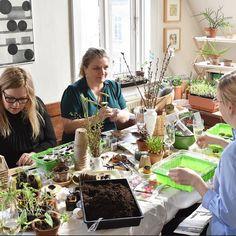 Green friends club  I Grønne venners selskab  Vi har haft den hyggeligest plante-frø-med-grønne-venner arrangement i min stue  med @summerwillbeback @lisagrue @maibrittamsler @camillaseverinsendk @sabinebrandt @petertompetersen #urbanfarming #urbangarden #urbangardencompany