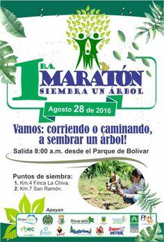 Este domingo 28 de agosto, Primera Maratón Siembra un Árbol