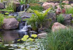 Revert: Fish Pond, Stream, Water Feature Design & Build, Koi Pond