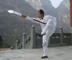 Chinese Martial Wudang TaiChi