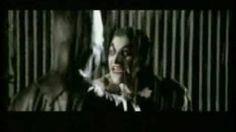 Batman vs Joker  vs Alien vs Predator