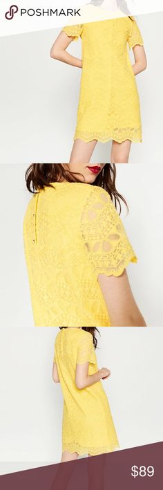 ZARA Yellow Short Sleeve Lace Dress Brand new with tags, never worn. Rear button detail. 65% Cotton, 35% Polyamide. Lining: 80% Polyester 20% Cotton. Available in medium in my listings. Zara Dresses Mini