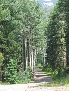 Trails in Pagosa Springs, CO Mountain States, Mountain High, Adventure Jeep, Places Ive Been, Places To Go, Jeep Trails, Colorado Plateau, Pagosa Springs, Great Plains