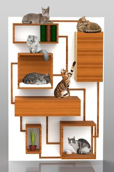 Oh wow! Conceptual multifunctional cat furniture by Spase Janevski, via Behance. Wish it was real!