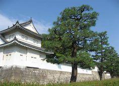 france japon chateau Nijo Nijojo