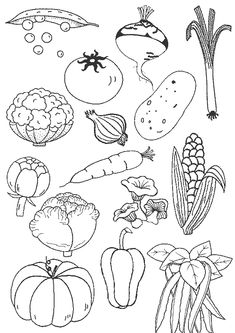 Coloring page vegetables, preschool food, coloring pages, children and parenting, More … - Healthy Food Art Vegetable Coloring Pages, Fruit Coloring Pages, Colouring Pages, Coloring Sheets, Adult Coloring, Coloring Books, Drawing Lessons For Kids, Art Lessons, Preschool Food