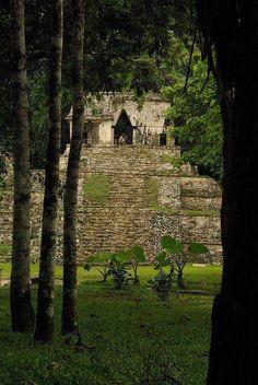 Palenque | Chiapas