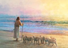 painting of jesus christ standing on the beach with several small lambs Paintings Of Christ, Christian Paintings, Christian Artwork, Jesus Painting, Lds Art, Bible Art, Pictures Of Jesus Christ, Jesus Art, God Jesus