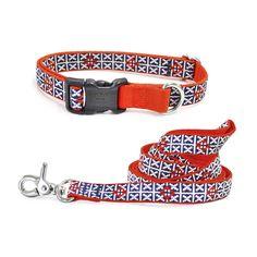 Leash and Collar Dog Walking Set