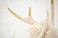 Gold tipped antler and roses by Amanda O'Rourke