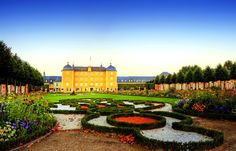 Schloss Schwetzingen lived down the road from here. Has the most beautiful Lilac trees.