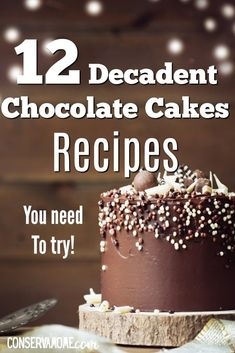 Looking for a delicious Chocolate Cake recipe? Here's a round up of 12 DecadentChocolate Cake Recipes that will make your mouth water! #chocolatecake #chocolate #cakerecipes Best Dessert Recipes, Cupcake Recipes, Easy Desserts, Delicious Desserts, Cupcake Cakes, Dessert Ideas, Cupcakes, Food Cakes, Meal Recipes
