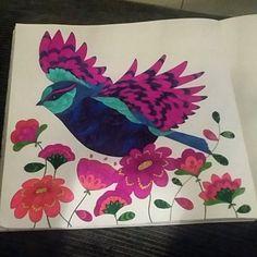 ShareIG Teinedillaaa Milliemarotta Animalkingdom Colouringbook Bird Flowers Colouring