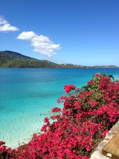 St. Thomas USVI  my sister and I have the funniest memories from here.  @Brooke Kirkland