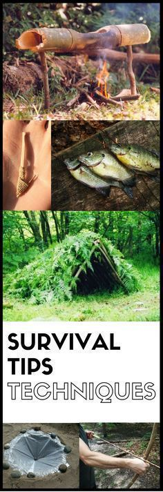Survival Tips and Techniques | Posted by: SurvivalofthePrepped.com