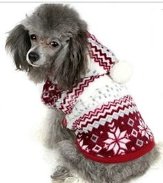 PoodleHouse Christmas Snow Pattern Pet Costume Woolen Jacket Winter Little Dog Coats for Puppy Youkshire XLarge >>> Check out this great product-affiliate link.