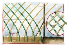 Hurdles: dare to wicker! Veg Garden, Garden Fencing, Garden Art, Garden Landscaping, Garden Design, Living Willow Fence, Country Fences, Natural Fence, Willow Branches
