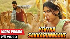 Latest Telugu Songs: Movie Songs,Video Songs,Cover Songs and New Song Download, Download Video, Movies 2017 Telugu, Samantha Songs, Latest Dj Songs, Love Songs Playlist, Music Labels, Cover Songs, News Songs