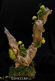 LUMYCELIUM - let you slip into an imaginary atmosphere. Fantasy lamps with lighting mushrooms. Welcome to the fantasy world of Lumycelium! Giant Mushroom, Mushroom Art, Mushroom Crafts, Mushroom Lights, Forest Decor, Weird Gifts, Fairy Crafts, Fairy Garden Accessories, Dry Clay