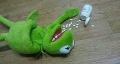 "Read La ranita kermit deprimida :""v from the story Memes para responder \:v/ by OnlyRandomThoughts (《♡》) with 147 reads. Kpop Memes, Dankest Memes, Funny Memes, Hilarious, It's Funny, Reaction Pictures, Funny Pictures, Funny Pics, Sapo Meme"