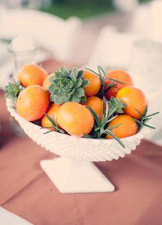 utilidade para suculenta na mesa da comida