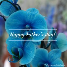 Happy Father's Day!  #fathersday #vaderdag