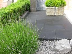 Oprit grind gebruik van staptegels in grind patio driveway garden pinterest tuin and van - Doen redelijk oprit grind ...