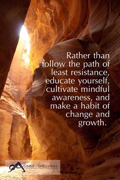 Rather than follow the path of least resistance, educate yourself, cultivate mindful awareness and make a habit of change and growth.