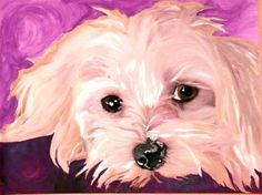 Coton De Tulear Charming and Funny by carlarfoster on Etsy Dog Pop Art, Dog Art, Maltese Dogs, Dogs And Puppies, Animal Paintings, Animal Drawings, Coton De Tulear Dogs, Watercolor Animals, Dog Portraits