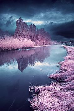 arabesquedream:    Misty rainy day by  David.Keochkerian  on Flickr.
