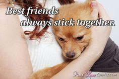 Best friends always stick together. #purelovequotes