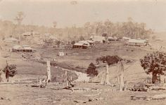 Maple St,Maleny in Queensland in the very early 1900s.