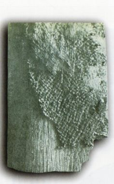 Çatalhöyük, Tapınak VI.A. 5 de bulunan dokuma parçası, James Mellaart (Erdinç Bakla archive)