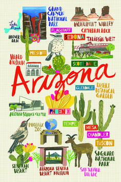Arizona map print by Carolyn Gavin Arizona Travel, Arizona Trip, Tucson Arizona, Lake Mead, Hoover Dam, Road Trippin, Outdoor Travel, Vintage Posters, Illustrators