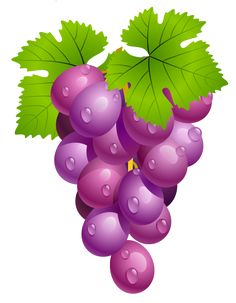 Grapes with Leaves PNG Clipart Picture L'art Du Fruit, Fruit Art, Fruit Clipart, Food Clipart, Watercolor Fruit, Fruit Painting, Vegetable Pictures, Première Communion, Fruits Drawing