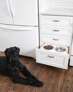 Looking for dog-friendly remodeling tips and ideas? Room for Tuesday shows you how to create this drawer insert for dog food and water that get tucked away during non-feeding times. No more stumbling over their bowls. Bonus points if you can teach your pup to open up the drawer when he or she is thirsty.
