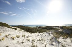 Topsail Hill State Park Shows Dramatic Increase in Visitation — Destin Shines