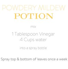 The dreaded powdery mildew. That didn't work at all. Although it might have worked on my favourite jeans because I can't find those. Since jumping up and down and screaming SCRAM didn't work on the powdery Bug Control, Pest Control, Organic Gardening, Gardening Tips, Kitchen Gardening, Greenhouse Gardening, Zucchini Plants, Growing Zucchini, Powdery Mildew