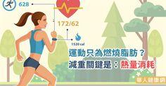 運動只為燃燒脂肪?減重關鍵是:熱量消耗 | 運動塑身 | 減重塑身 | 華人健康網