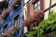 All sizes | Alsace (France) - Riquewihr | Flickr - Photo Sharing!