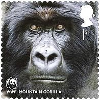 2011 - Mountain gorillas - © Royal Mail -Around 780 mountain gorillas are found in the border areas of Rwanda, Uganda and the Democratic Republic of Congo. They are the largest of the great apes, and we work to protect them and their habitat as part of the International Gorilla Conservation Programme. Our partners are the African Wildlife Foundation, Fauna & Flora International and the protected-area authorities of the three countries.