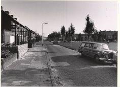 1959: Leeuwerikstraat