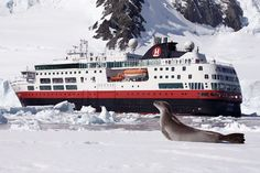 Nuevo itinerario de Patagonia y Antartida de Hurtigruten