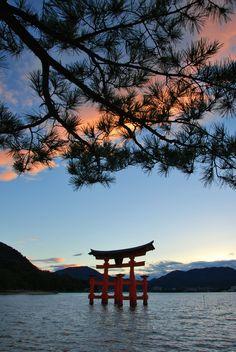 #miyajima #torii